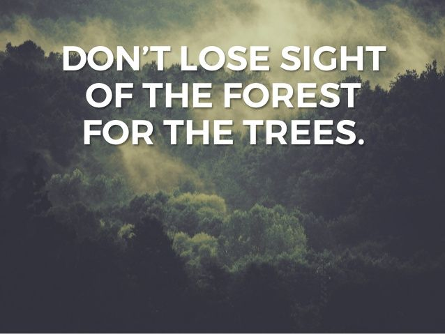 Can't See The Forest For The Trees!